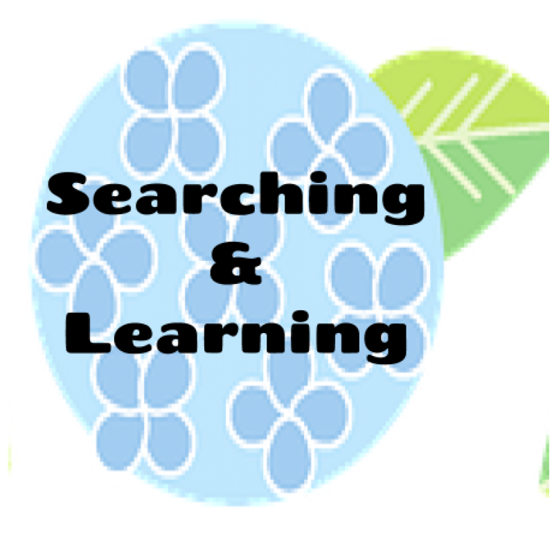 Searching and Learning